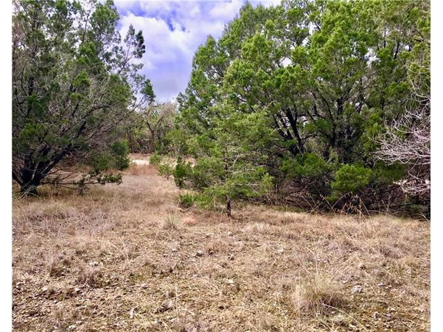 Farms & Ranches for sale in 3005 S Rainbow Ranch Rd, Dripping Springs, Texas ,78620
