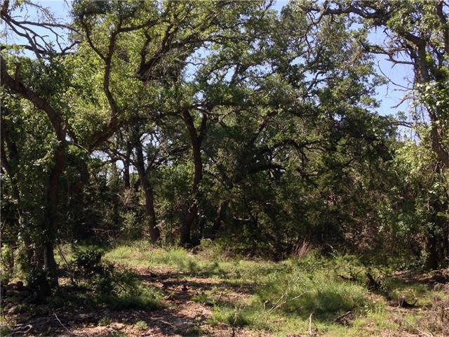 Land for sale in 12000 Rr 2325, Wimberley, Texas ,78676
