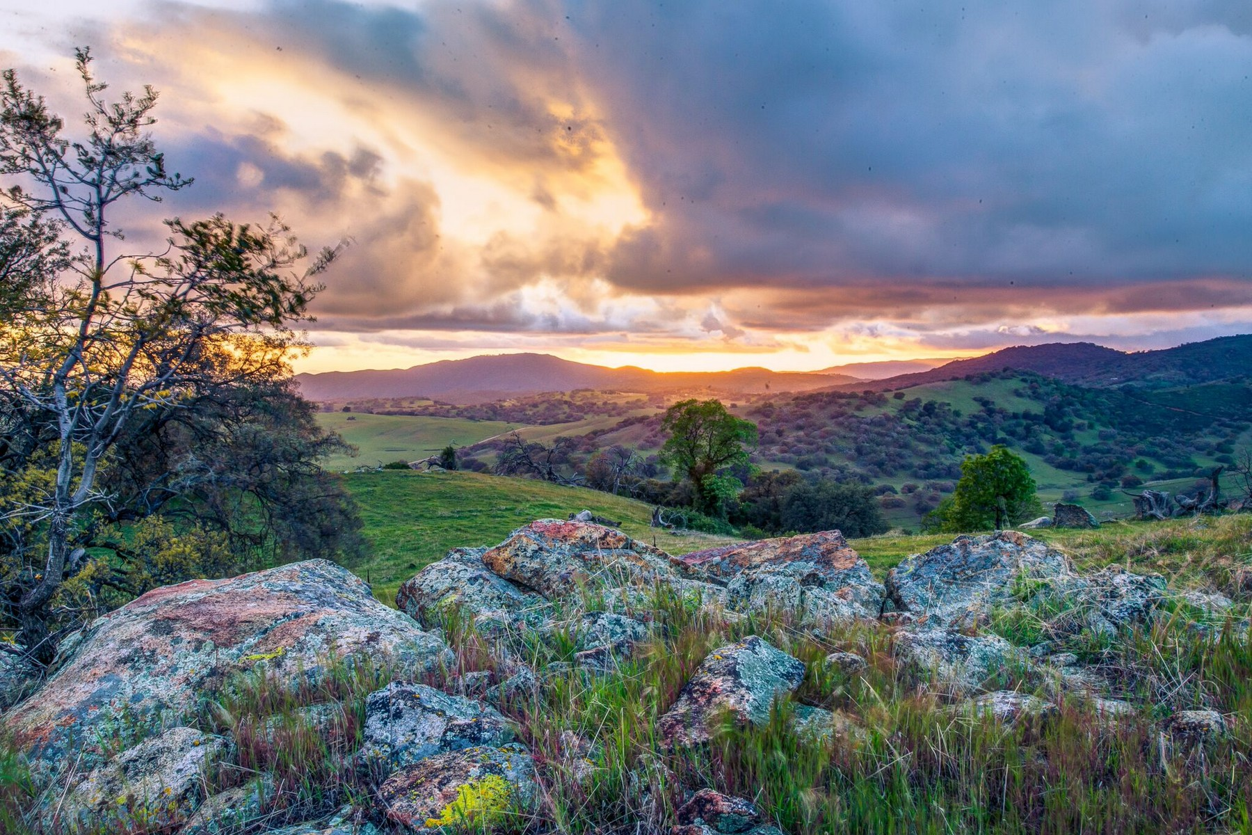 Farms & Ranches for sale in 26677 Meadow Lake Road, Santa Ysabel, California ,92070