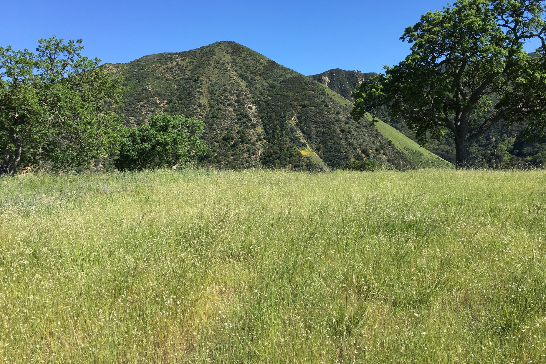 Land for sale in 30025 Olivia Drive, Greenfield, California ,93927