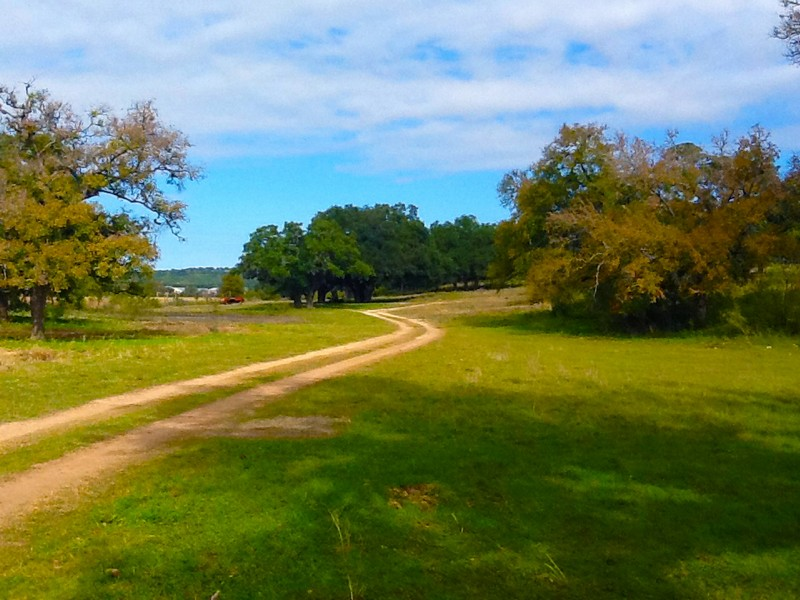 Farms & Ranches for sale in FM 1863, Bulverde, Texas ,78163