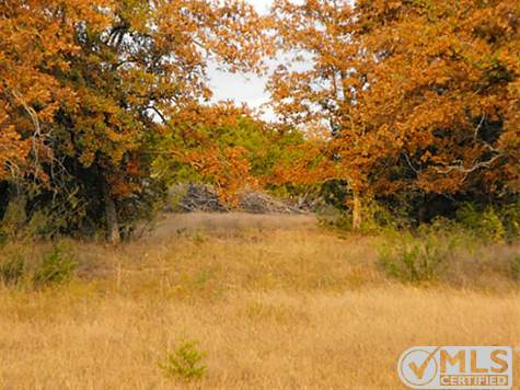 Land for sale in 898 County Road 2435, Iredell, Texas ,76649