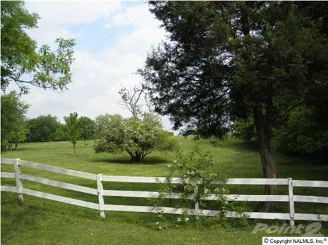 Land for Sale in 18785 Upper Fort Hampton Rd., Elkmont, Alabama ,35620