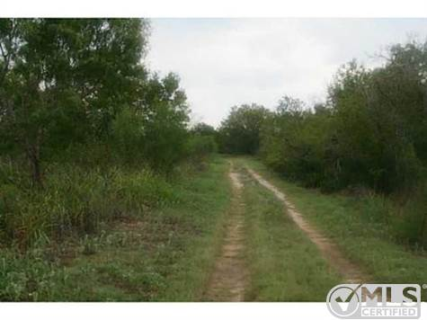 Land for Sale in , New Braunfels, Texas ,78130