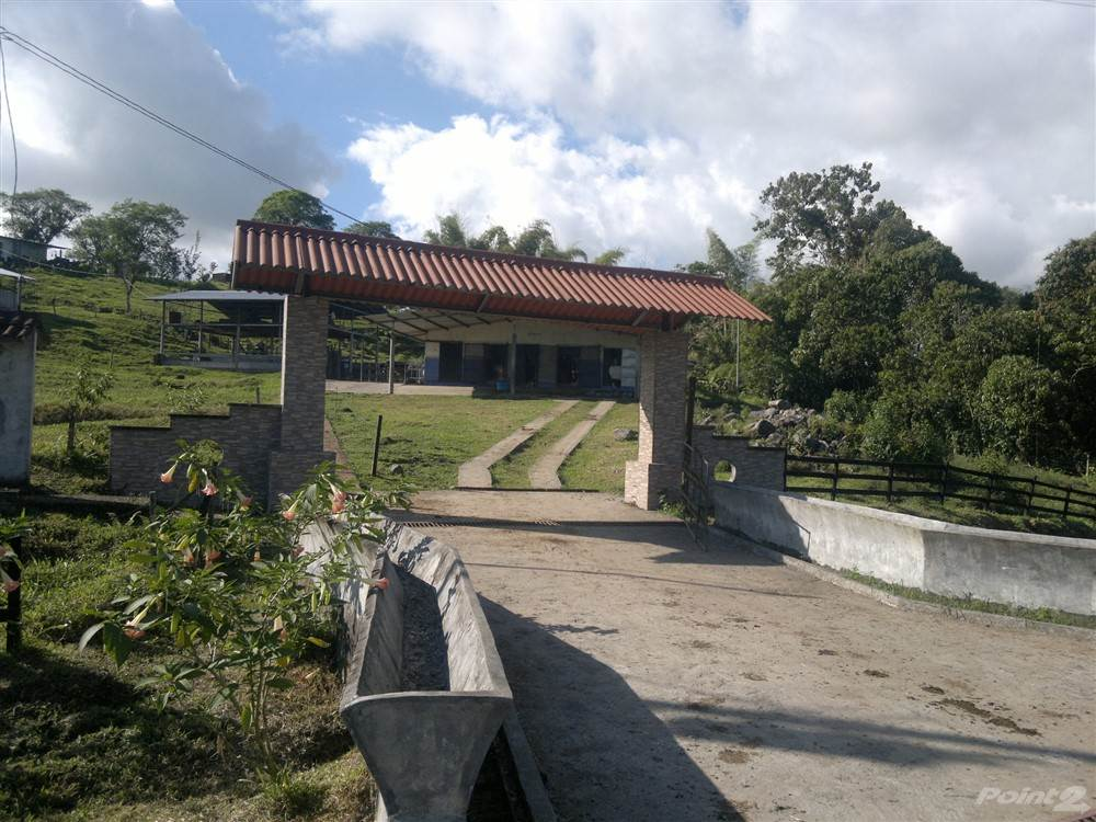 Residential For Sale in Large Dairy Farm for Sale near Volcan, Chiriqui, Panama, Boqueron, Chiriquí   , Panama