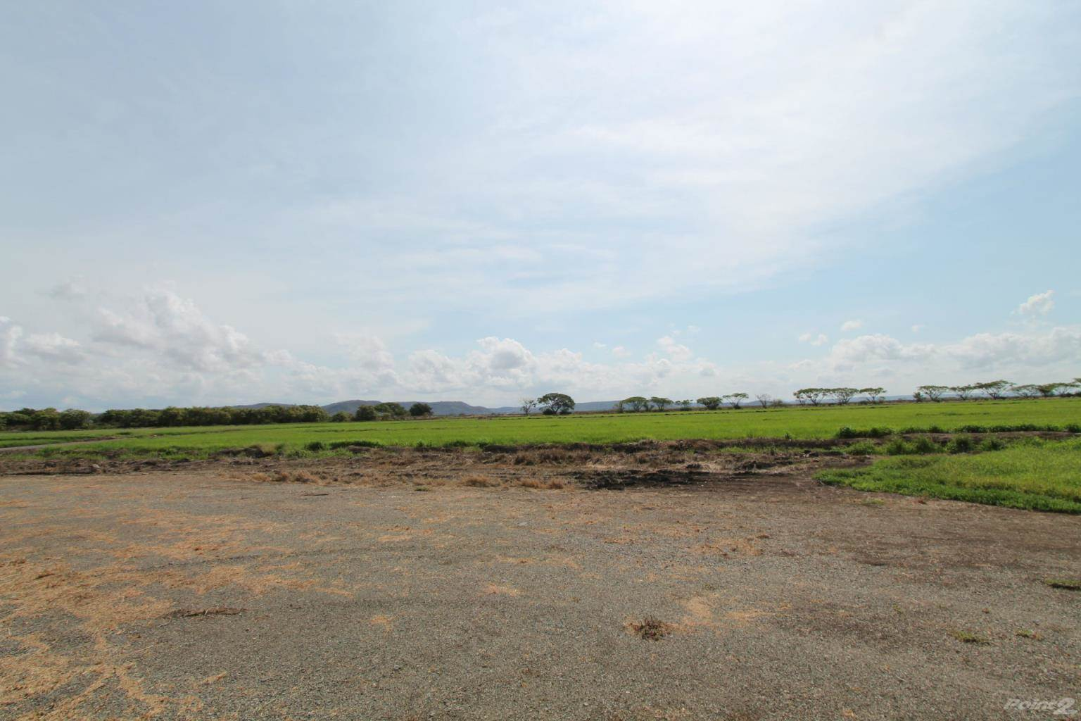 Farms & Ranches for sale in Farm in Libera, Liberia, Guanacaste   , Costa Rica