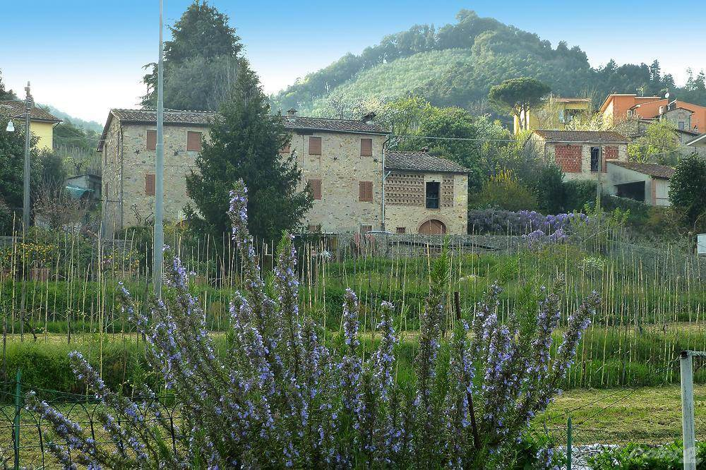 Residential For Sale in
