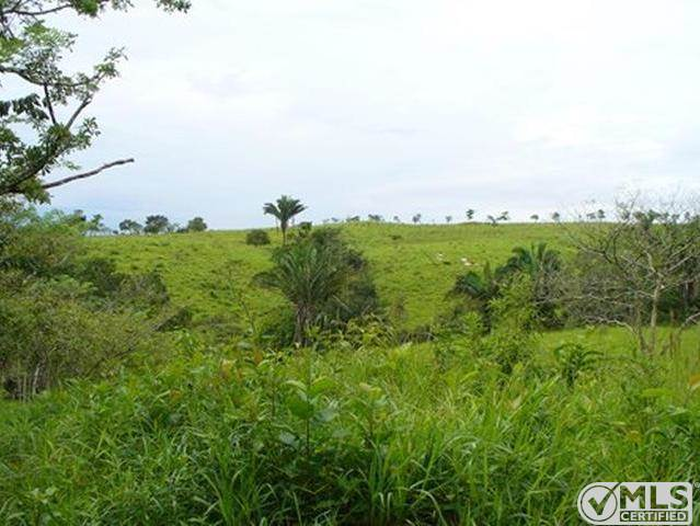 Farms & Ranches for sale in Toabare, Coclé, Penonomé, Coclé   , Panama