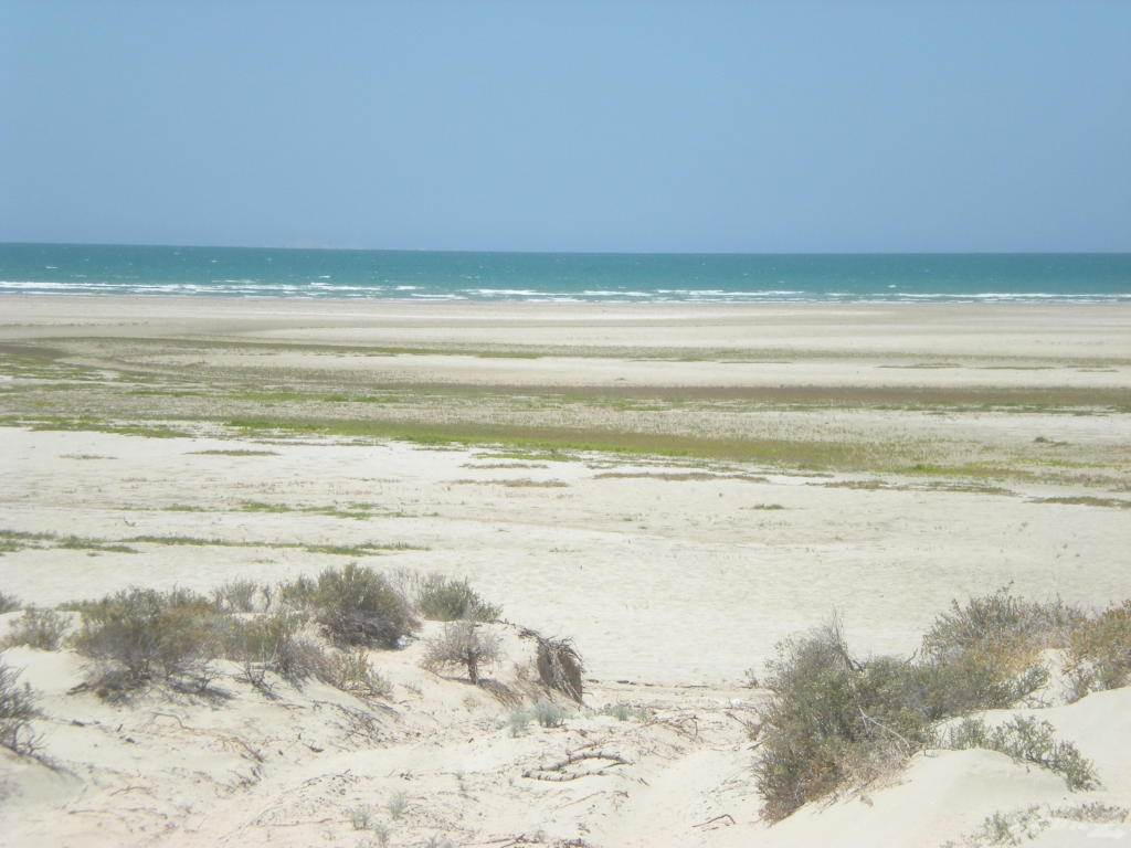 Land for sale in HWY 37, Playa San Jorge, Puerto Penasco, Sonora ,83553  , Mexico