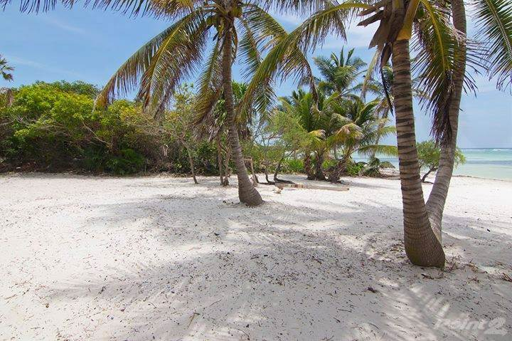 Residential For Sale in Private Luxury Resort Developer's Gem - Small island near Placencia Peninsular, Belize, Placencia, Stann Creek   , Belize