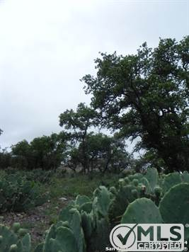 Farms & Ranches for sale in 00 Hwy 173 S, Hondo, Texas ,78861