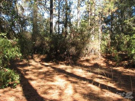 Land for sale in Wards Ferry Rd Robinson Mine Property, Big Oak Flat, California ,95305