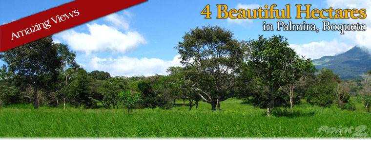 Residential For Sale in 10 Beautiful Acres in Palmira Boquete – Owner financing available, Palmira, Boquete, Panama, Boquete, Chiriquí   , Panama