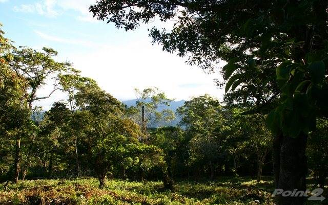 Residential For Sale in Palmira, Boquete Beautiful 17 plus acres, Palmira, Boquete, Panama, Boquete, Chiriquí   , Panama
