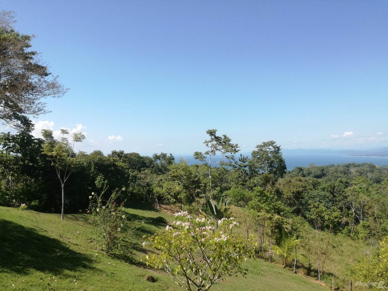 Residential For Sale in 58 Hectare Property, Pavones, Puntarenas ,1000  , Costa Rica