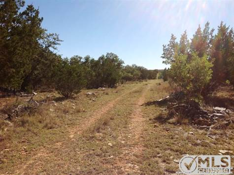 Land for sale in 3961 CR 251, Hondo, Texas ,78883