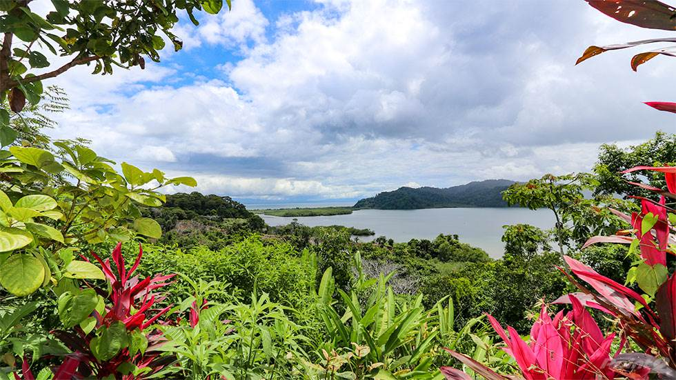 Farms & Ranches for sale in Golfito, Puntarenas, Costa Rica, Golfito, Puntarenas   , Costa Rica