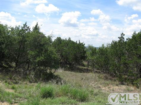 Commercial For Sale in 0 W Hwy 46, Bulverde, Texas ,78070