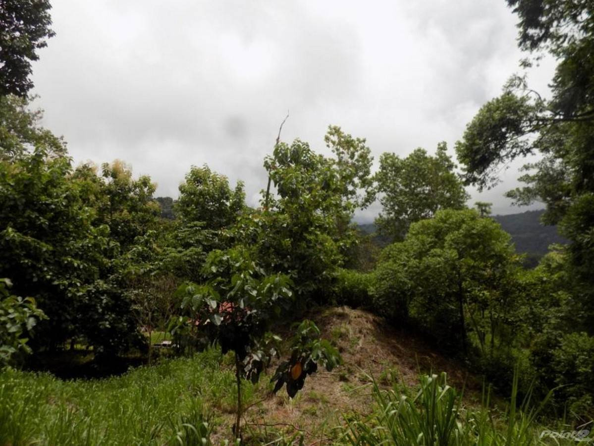 Residential For Sale in Lagunas Home Priced to Sell, Dominical, Puntarenas ,60101  , Costa Rica
