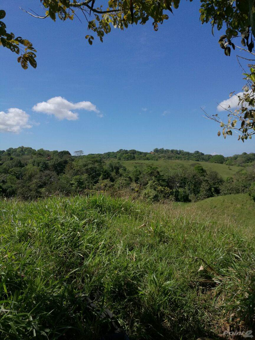 Farms & Ranches for sale in Finca Colpachi Naranjito, Quepos, Puntarenas ,60601  , Costa Rica
