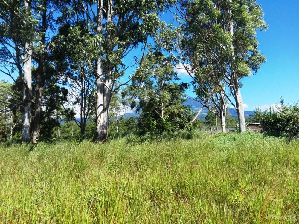 Residential For Sale in Great Flat Lot for a New House in Boquete, Panama, 3/4 Acres on Paved Road, Palmira, Boquete, Panama, Boquete, Chiriquí   , Panama