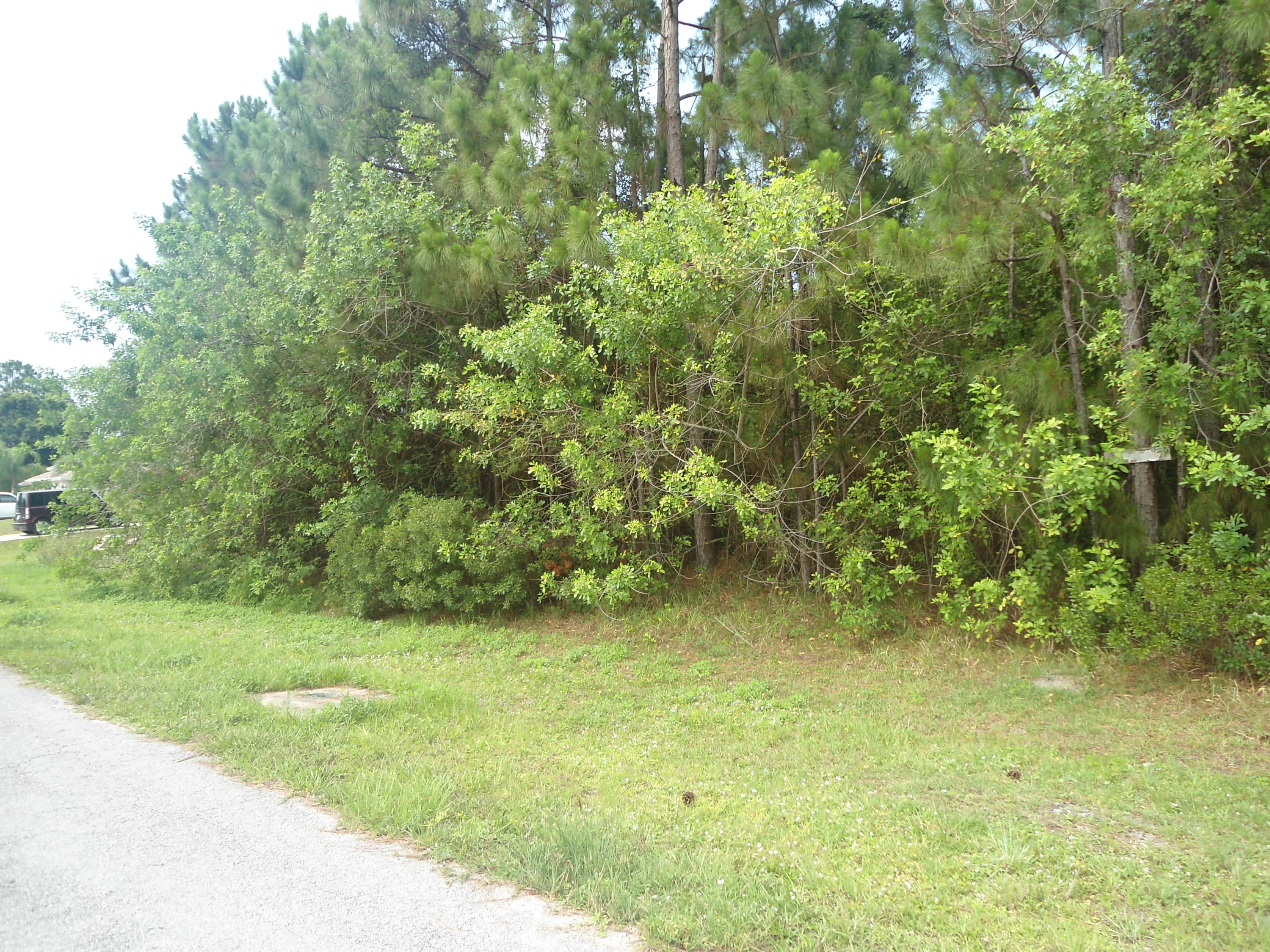 Land for sale in 7007 Ramrod Circle, Labelle, Florida ,33935