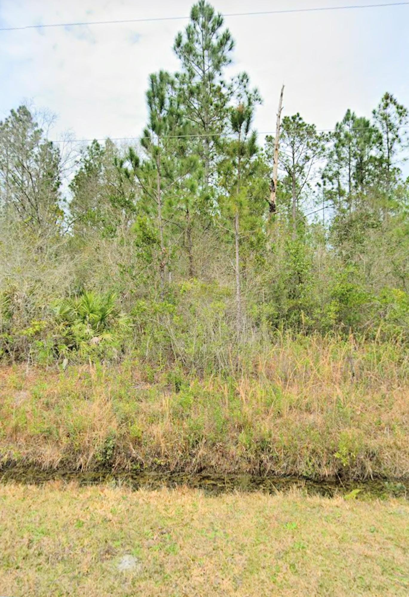 Land for sale in 4340 Calvin Street, Hastings, Florida ,32145