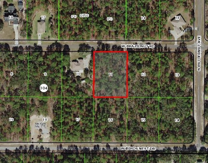 Land for sale in 3546 W Brazilnut Road, Beverly Hills, Florida ,34465