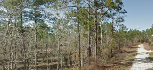 Land for sale in 2651 SE 148th Terrace, Morriston, Florida ,32668