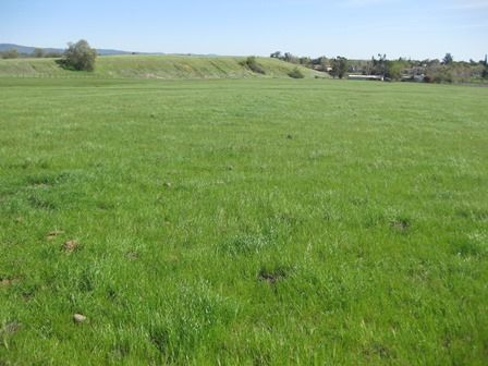 Commercial Land for sale in 00 Table Mountain Blvd., Oroville, California