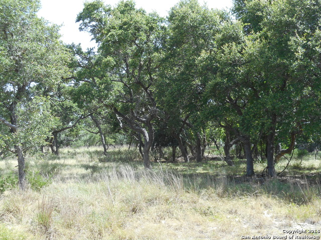 Land for sale in 1631 Nixon Dr, Boerne, Texas ,78006
