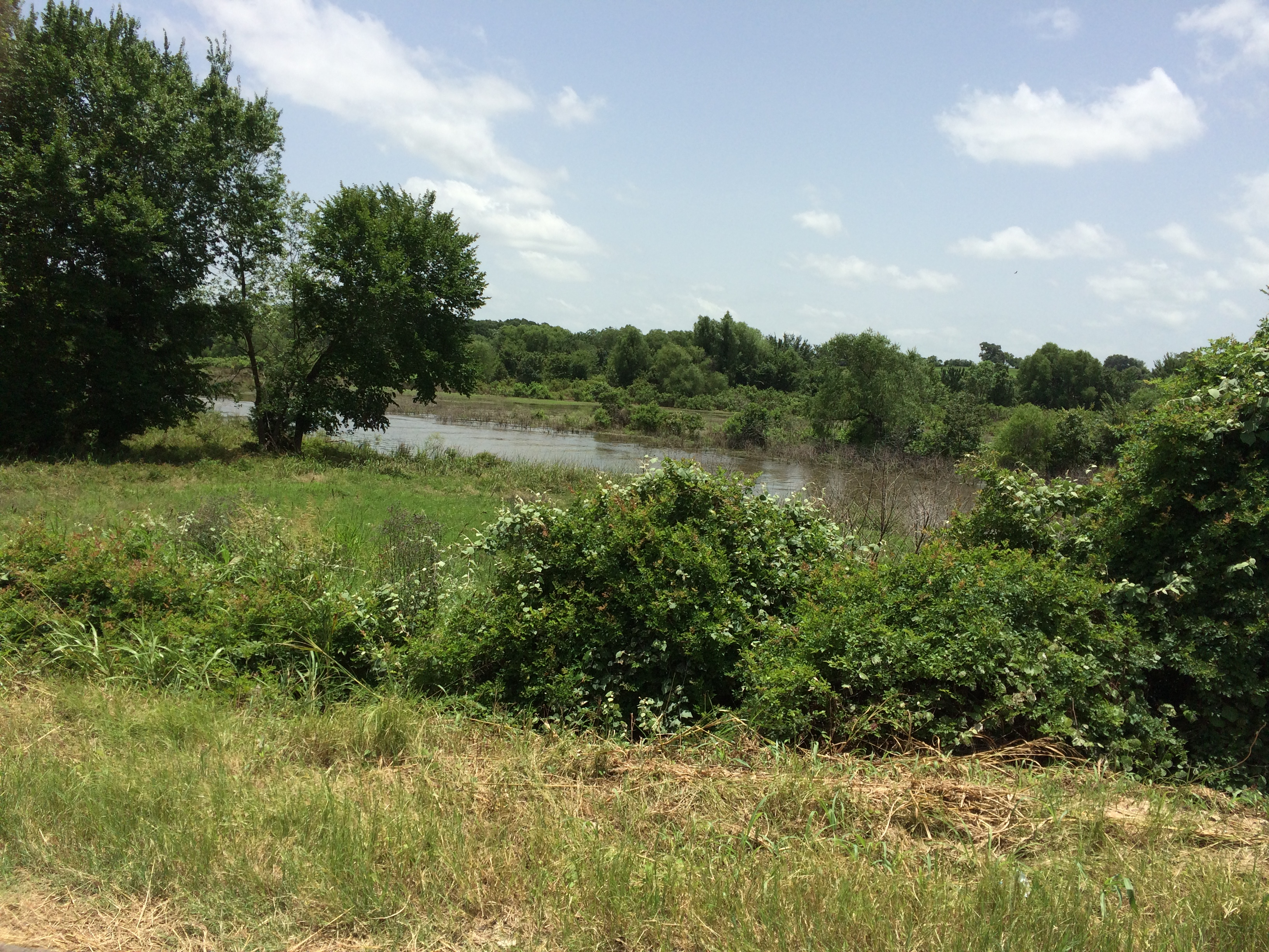 Land for sale in 1314 LCR 740, Groesbeck, Texas ,76642