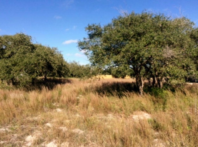 Land for sale in 0 W McClung Ave, Aransas Pass, Texas ,78336