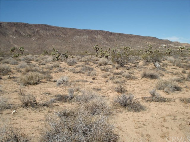 Land for sale in 0 Old Woman Springs Road, Yucca Valley, California ,92268