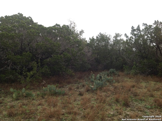 Land for sale in 222 County Road 244, Hondo, Texas ,78572