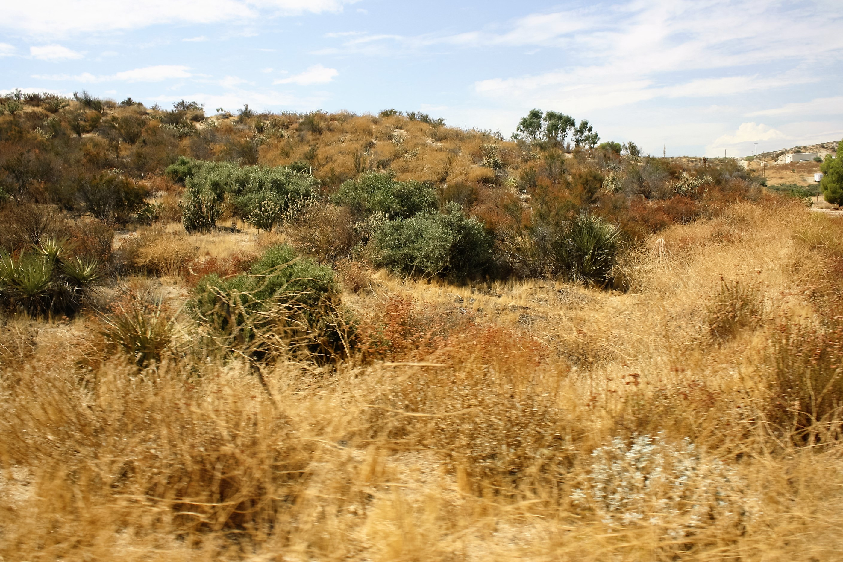 Land for sale in 0 Witten Dr, Aguanga, California ,92539