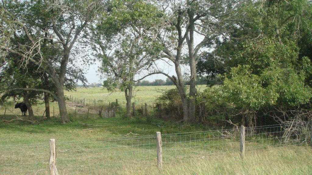 Land for sale in , Rosenberg, Texas ,77471