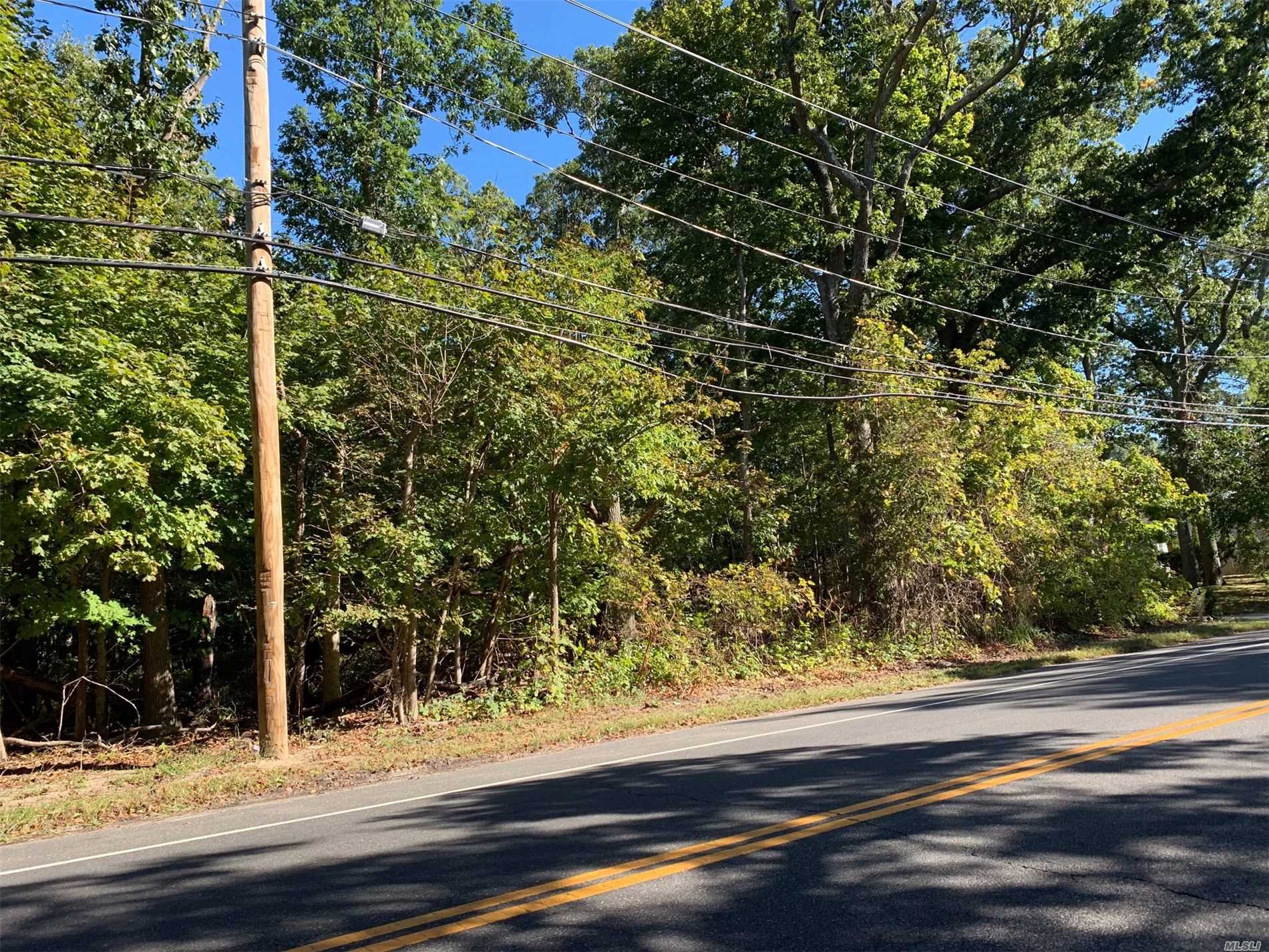 Commercial for sale in 1295* Main E St, Riverhead, NY ,11901
