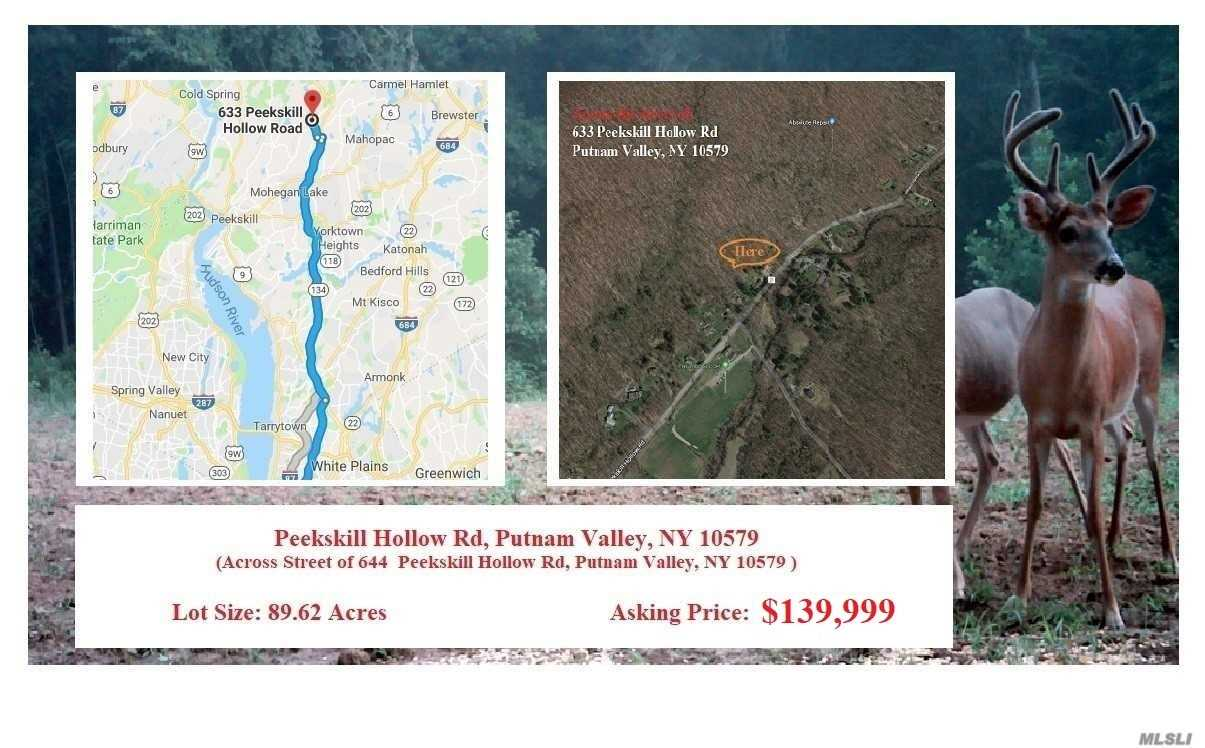Land for sale in 0 Peekskill Hollow, Out Of Area Town, NY ,10579