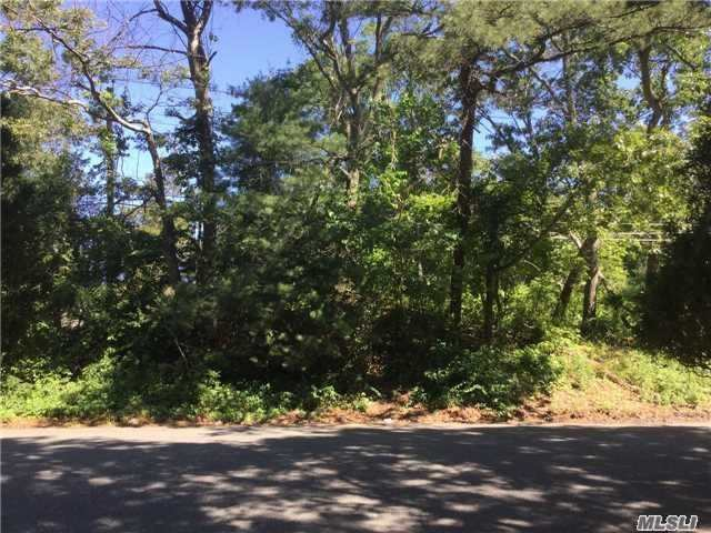 Land for sale in Merrick Rd, Shirley, NY ,11967