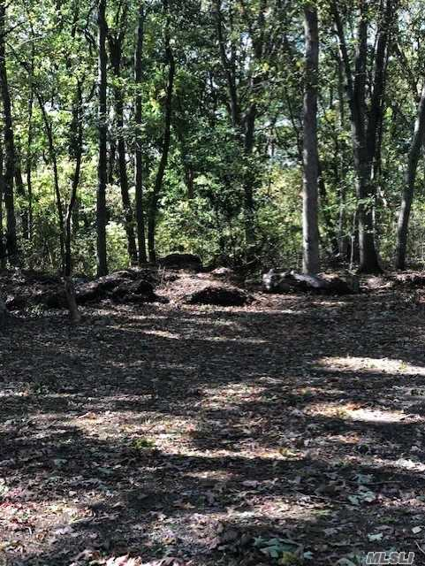 Land for sale in 114 Jefferson Ave, St. James, NY ,11780