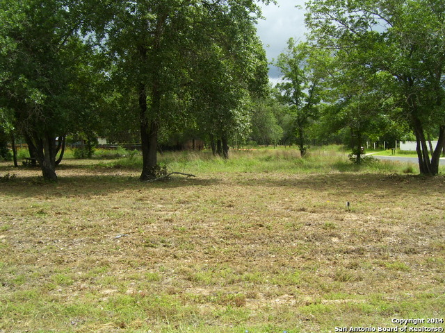 Land for sale in 4539 New Mathis Rd, Elmendorf, Texas ,78112