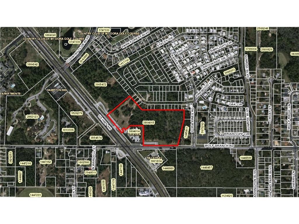 Land for sale in Us Hwy 441 & Wolf Branch Road, Mount Dora, Florida ,32757