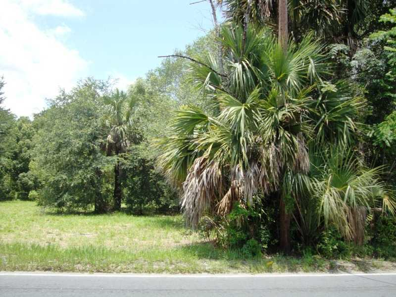 Land for sale in Sr 46/ 435 ROAD, Mt Plymouth, Florida ,32776