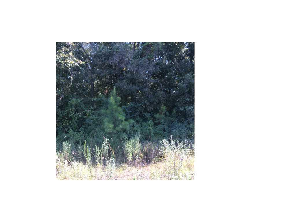 Land for sale in 3300 St Stephens Road, Prichard, Alabama ,36610