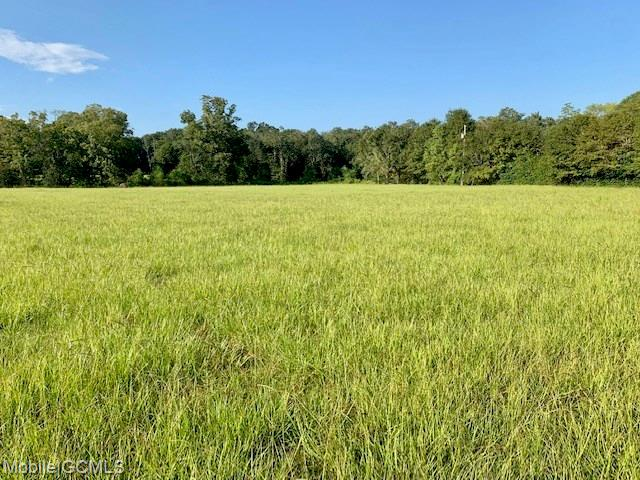 Land for sale in 19160 County Road 68, Robertsdale, Alabama ,36567