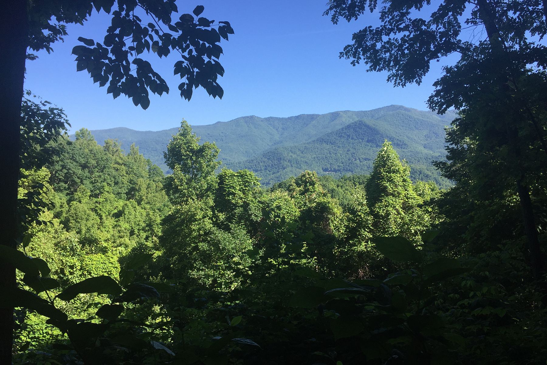 Residential Lots & Land for sale in 0029 High Line Rd , 29, Sylva, NC ,28779