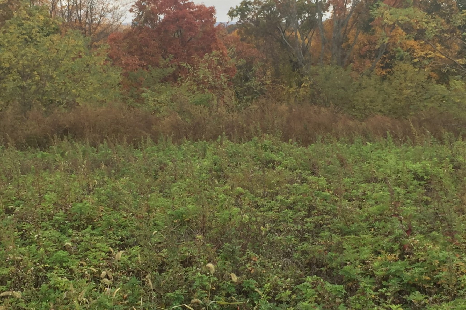 Land for sale in 55 Meriwether Trail, Congers, NY ,10920