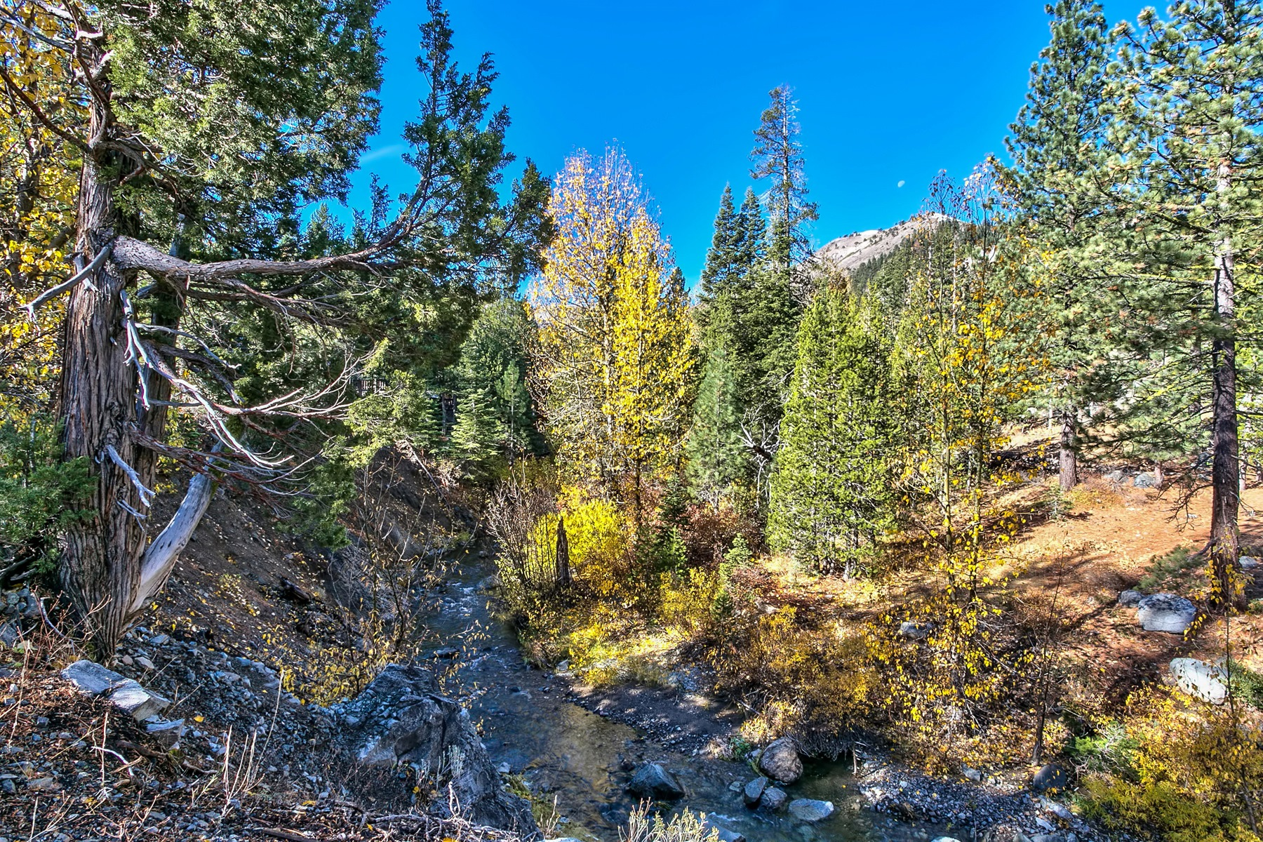 Land for sale in 1432 Mineral Springs Trail, Alpine Meadows, California ,96146