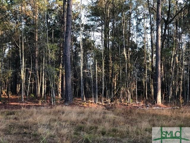 Land for sale in Osteen Road Lot 5, Bloomingdale, Georgia ,31302